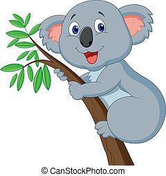 schattig, koala, spotprent