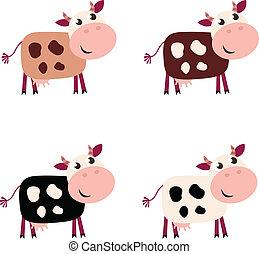 schattig, koe, set, in, 4, anders, kleuren, vrijstaand, op wit, achtergrond