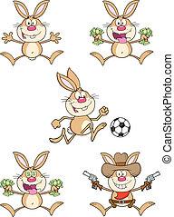 schattig, konijnen, 4., set, verzameling