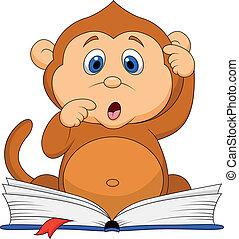 schattig, lezende , aap, boek, spotprent