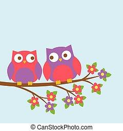 schattig, paar, bloeien, tak, uilen
