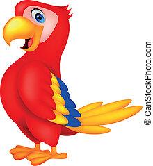 schattig, papegaai, vogel, spotprent