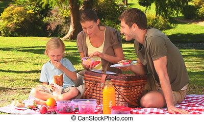 schattig, picknick, gezin