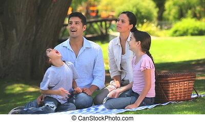 schattig, picknick, hebben, gezin