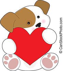 schattig, puppy, valentijn