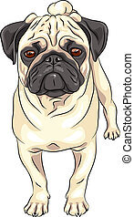 schattig, schets, pug, ras, dog, vector