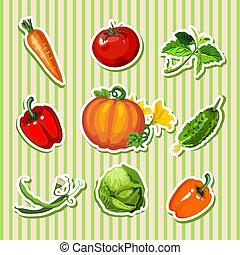 schattig, schets, rijp, staal, ontwerp, close-up., spandoek, textuur, thema, vegetables., achtergrond, poster, plakkaat, gestreepte , oogsten, spotprent, kaart, plakkaat, gezonde , vector, diet., fitness