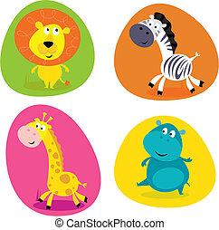 schattig, set, dieren, -, safari, lion...