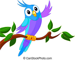 schattig, spotprent, papegaai
