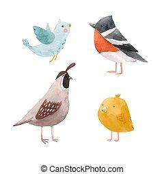 schattig, vector, illustratie, vogel, kuiken, leeuwerik,...
