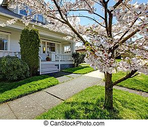 schattig, weinig; niet zo(veel), oud, woning, bloeien, boom., kers