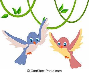 schattig, weinig; niet zo(veel), set, kleurrijke, vrijstaand, achtergrond, witte , vogels