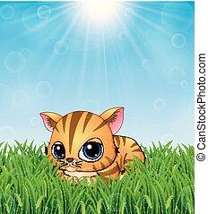 schattig, zonneschijn, dons, helder, leggen, achtergrond, katje, gras, spotprent