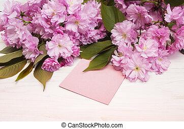 scheda, fiori, insegnante, giorno, sakura