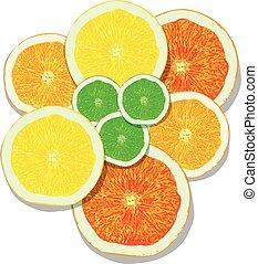 scheiben, zitrone, orange, pampelmuse, hintergrund, limette, weißes