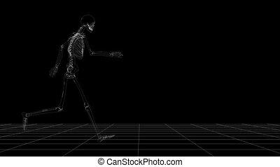 scheletro, correndo