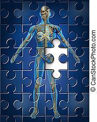 scheletro, umano, malattia