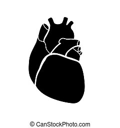 human heart - Schematic representation of the human heart. A...