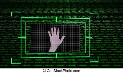 schermi, scienza, esposizione, calcolare