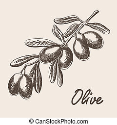 schets, boompje, stijl, illustratie, hand, tak, olive,...