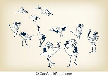 schets, dans, japanner, vogel, vector, kraan, vogels