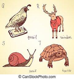 schets, dieren, alfabet, stijl, zich verbeelden, ouderwetse