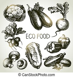 schets, eco, set., illustratie, hand, foods.vector, groente,...
