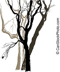 schets, grafisch, oud, tekening, bomen
