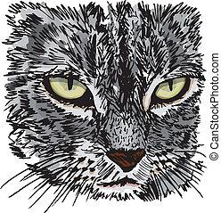 schets, ground., weinig; niet zo(veel), illustratie, kat, ...