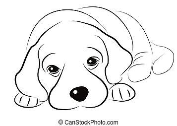 schets, puppy, vrijstaand, witte