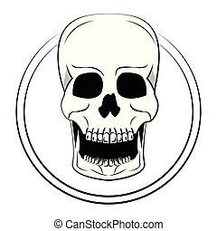 schets, schedel, koel