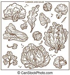 schets, slaatje, iconen, groentes, kolen, sla, vector