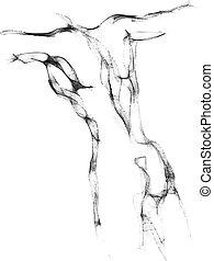 schets, torso, man