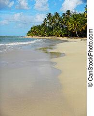 schiereiland, strand, samana, terrenas, las