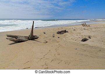 schiffbruch, skelettküste