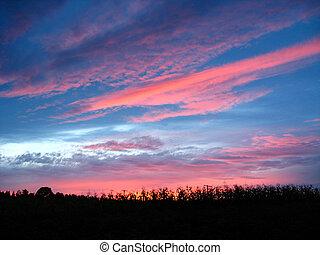 schilderachtig, blauwe , en, scharlaken, wolken, van,...