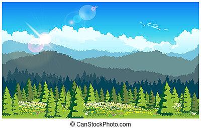 schilderachtig, bos