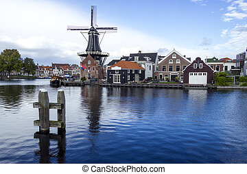 schilderachtig, landscape, met, windmill., haarlem, holland