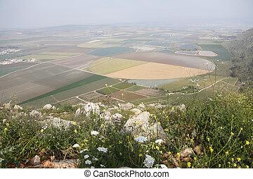 schilderachtig, vallei, in, de, israëlisch, galilee.