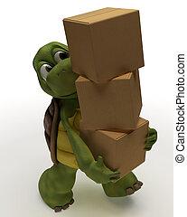 schildkröte, karikatur, tragen, verpackung, karton
