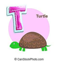 schildpad, alfabet, kinderen, t, brief, spotprent