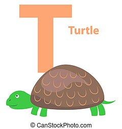 schildpad, alfabetbrief, t, illustratie