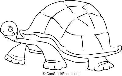 schildpad, groot, kleurend boek