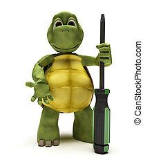 schildpad, schroevendraaier