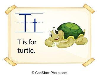 schildpad, t, brief