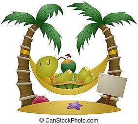 schildpad, vakantie