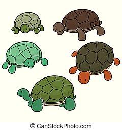 schildpad, vector, set