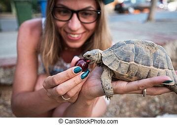schildpad, vrouw, het voeden