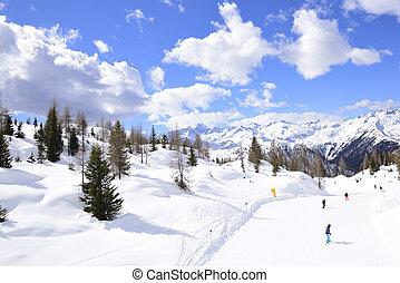 schineigung, mit, skiers, in, alpen