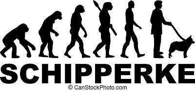 Schipperke evolution word